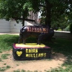 Bison painted for Brian Williams